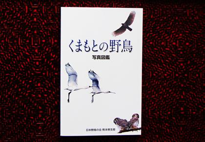 kumamotozukan.jpg